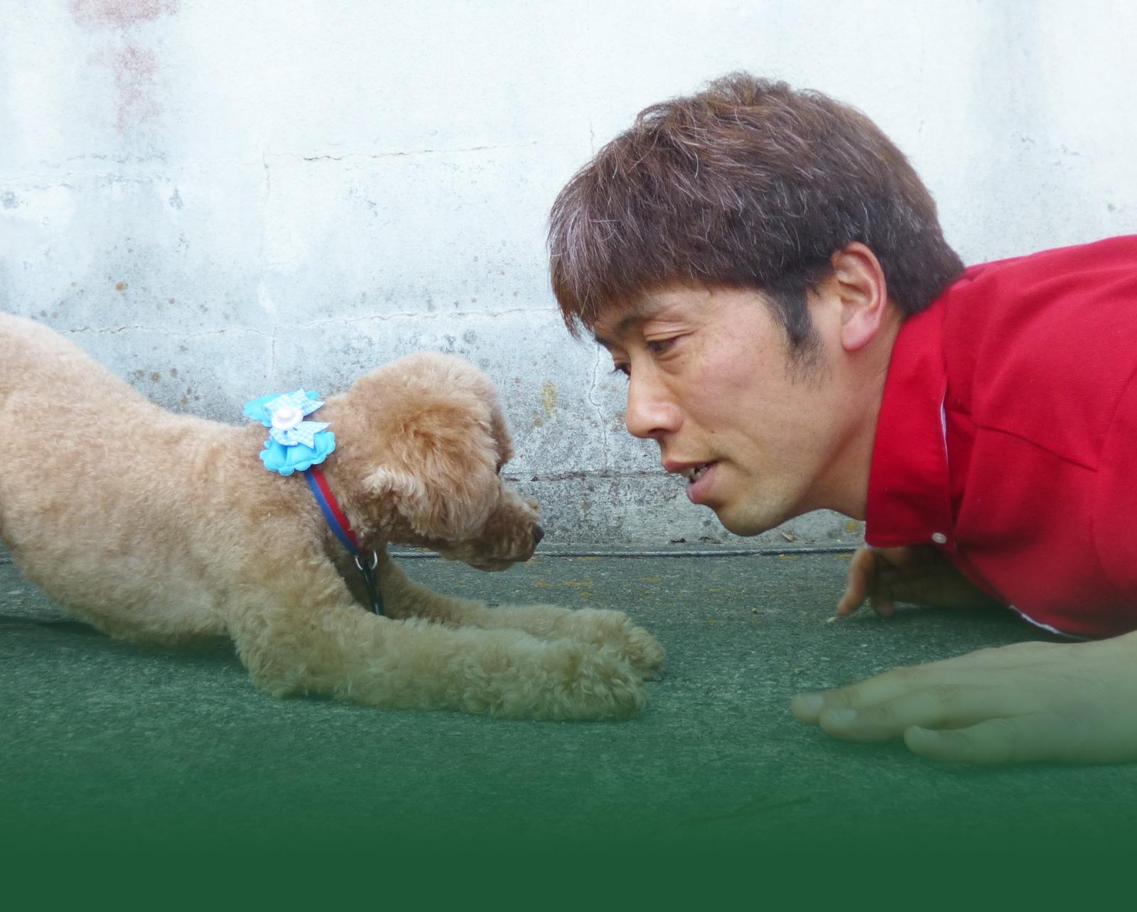 絆を深めるコミュニケーションで 愛犬をもっと好きになる